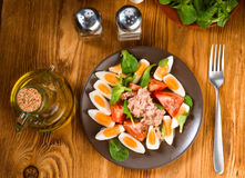 Вертикаль делая домодельный среднеземноморской салат с оливковым маслом Стоковое Изображение RF