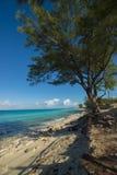 Вертикаль острова Bimini Стоковые Фотографии RF