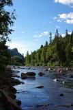 Вертикаль Salmon River Стоковые Изображения