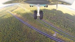 Вертолет летает над чащей леса на день солнечного лета теплый видеоматериал