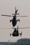 вертолет WZ-9 стоковая фотография