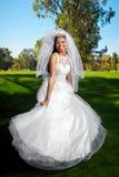 Вертясь невеста Стоковое Фото
