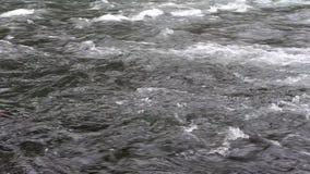 Верхнее видео реки HD McKenzie акции видеоматериалы