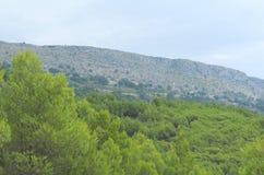 Верхнее Podstrana, Хорватия на горном склоне Стоковое Изображение