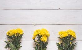 верхнее wiev хризантемы на белых досках Стоковое Изображение RF