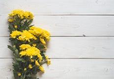 верхнее wiev хризантемы на белых досках Стоковое фото RF