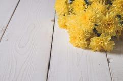 верхнее wiev хризантемы на белых досках Стоковые Изображения