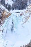 Верхние падения национального парка Йеллоустона Стоковые Изображения