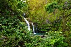Верхние падения Waikani также известные как 3 медведя, трио больших водопадов между утесами & пышная растительность с популярным  Стоковое фото RF