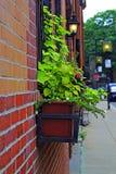 Верхние привлекательности в Бостоне (США) Стоковое фото RF