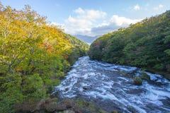Верхний каскад Ryuzu падает, Nikko, префектура Tochigi, Япония С предыдущими цветами падения Стоковое фото RF