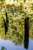 Верхний пруд, Kytayiv, Киев Стоковая Фотография