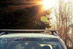 Верхняя часть автомобиля на солнечный зимний день в лесе стоковое изображение rf