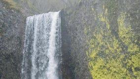 Верхняя часть водопада с лишайником сток-видео