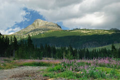 Верхняя часть высоких гор Tatras, Словакия Стоковое Фото