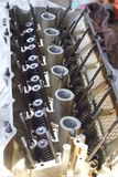верхняя часть головки цилиндра Стоковые Фото