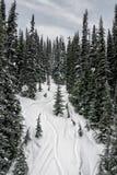 Верхняя часть горы Snowy Стоковые Фотографии RF