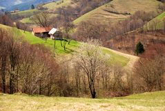 верхняя часть домов холмов Стоковые Фото