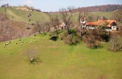 верхняя часть домов холмов Стоковые Изображения RF