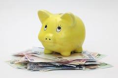 верхняя часть евро кредиток банка piggy стоящая Стоковая Фотография
