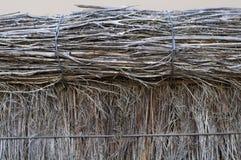 верхняя часть загородки щетки Стоковые Фото