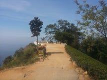 Верхняя часть места Lipton в Шри-Ланка стоковые изображения
