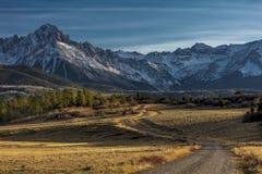 Верхняя часть района дикой природы сосен показывает дорогу для того чтобы установить Sneffels стоковые изображения