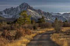 Верхняя часть района дикой природы сосен показывает дорогу для того чтобы установить Sneffels стоковое изображение