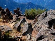 Верхняя часть Риджа скалистой горы Стоковое Фото