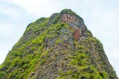 Верхняя часть скалы покрытой с тропическими деревьями Стоковые Изображения