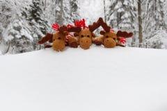 верхняя часть сугроба deers рождества Стоковые Фото
