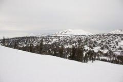 верхняя часть съемки гор панорамная Стоковое фото RF