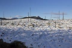 Верхняя часть холма предусматриванная в снеге стоковые изображения