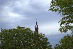 Верхняя часть церков между деревьями и небом от далеко Стоковое Фото