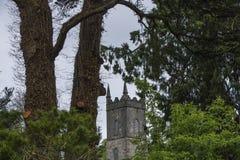Верхняя часть церков холма и через деревья Стоковые Изображения