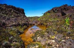 Верхняя часть Roraima Tepui Стоковая Фотография RF