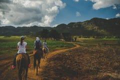 Верховая езда в долине viñales vinales Кубы Стоковые Фотографии RF