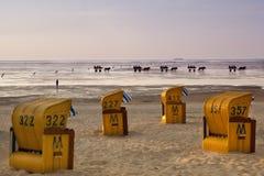 Верховая езда в Северном море стоковое фото