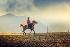 Верховая езда в горе Bromo стоковые изображения rf