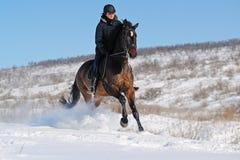 Верховая езда в зиме Стоковое фото RF