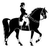 Верховая езда Стоковые Изображения