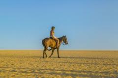 Верховая лошадь молодой женщины на пляже стоковое изображение