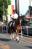 Верховая лошадь полисмена Стоковое фото RF