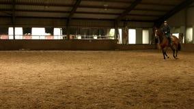 Верховая лошадь человека вокруг арены акции видеоматериалы