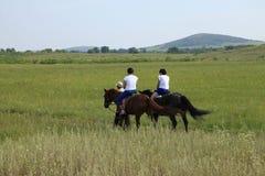 2 верховой лошади женщин Стоковое Изображение RF