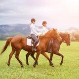 Верховые лошади молодых женщин на луге горы Стоковое Изображение