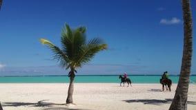 Верховые лошади людей на пляже сток-видео
