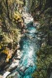 Верхушка падает водопад каньона Johnston, Banff Nationalpark Канада Альберта стоковые изображения