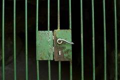 дверь зафиксировала Стоковые Изображения RF