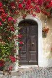 дверь старая Стоковое Изображение